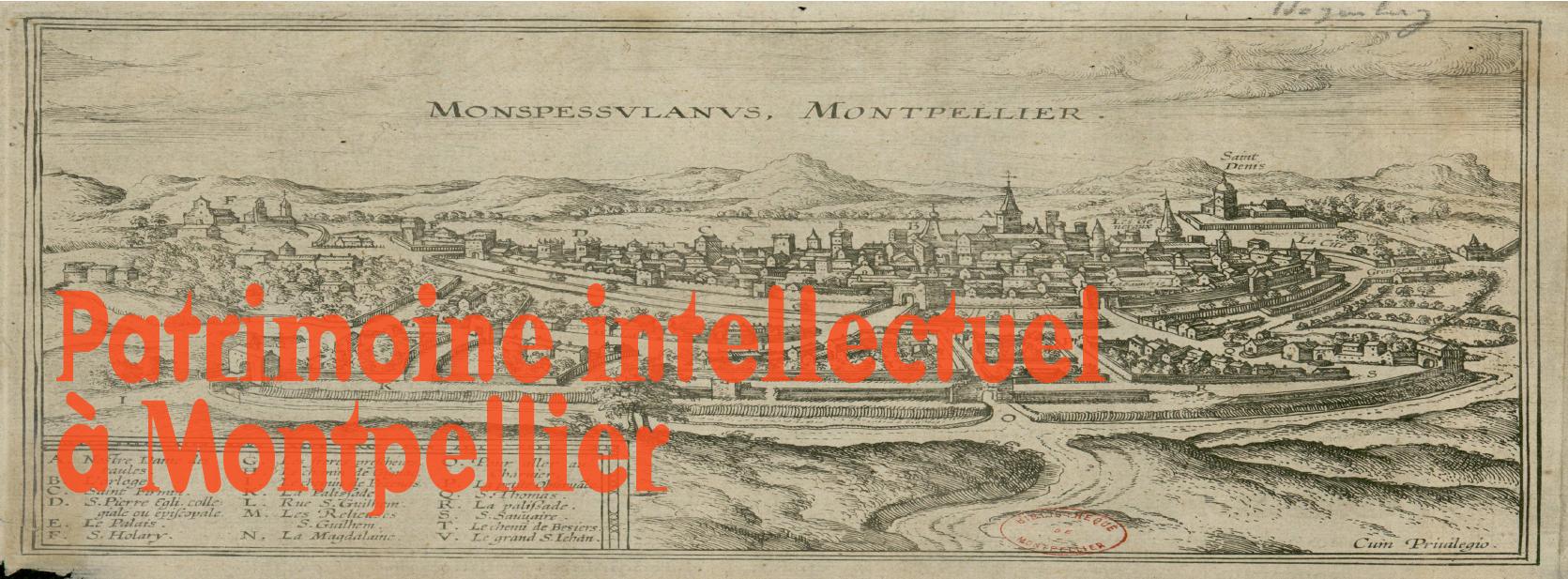 Patrimoine intellectuel à Montpellier